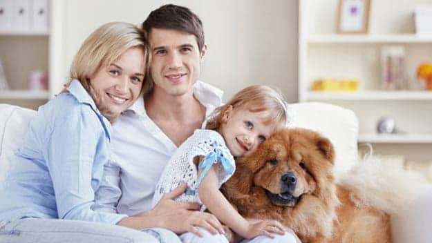 Wills & Trusts dog-young-family Direct Wills St Margarets